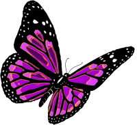 flying butterfly PNG image