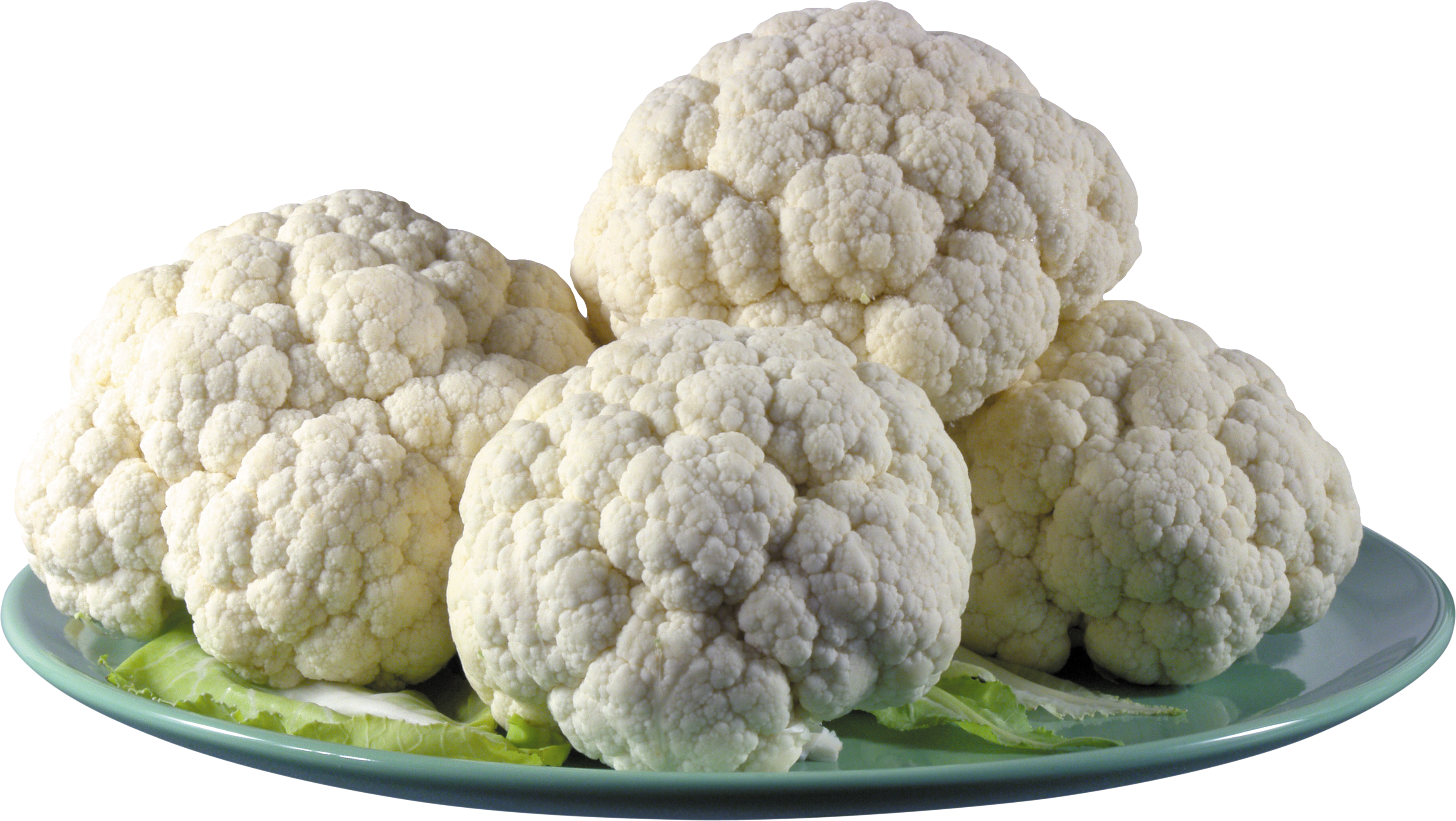 Cabbage PNG images