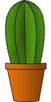 Cactus PNG image