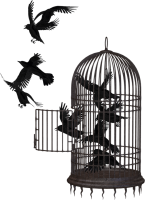 Cage bird PNG