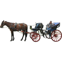 Carriage PNG