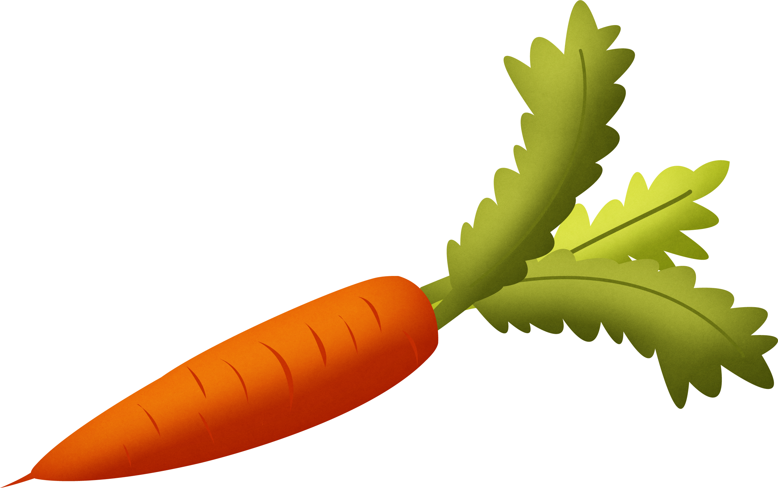 carrot png image free download carrot clipart png carrot clip art free images
