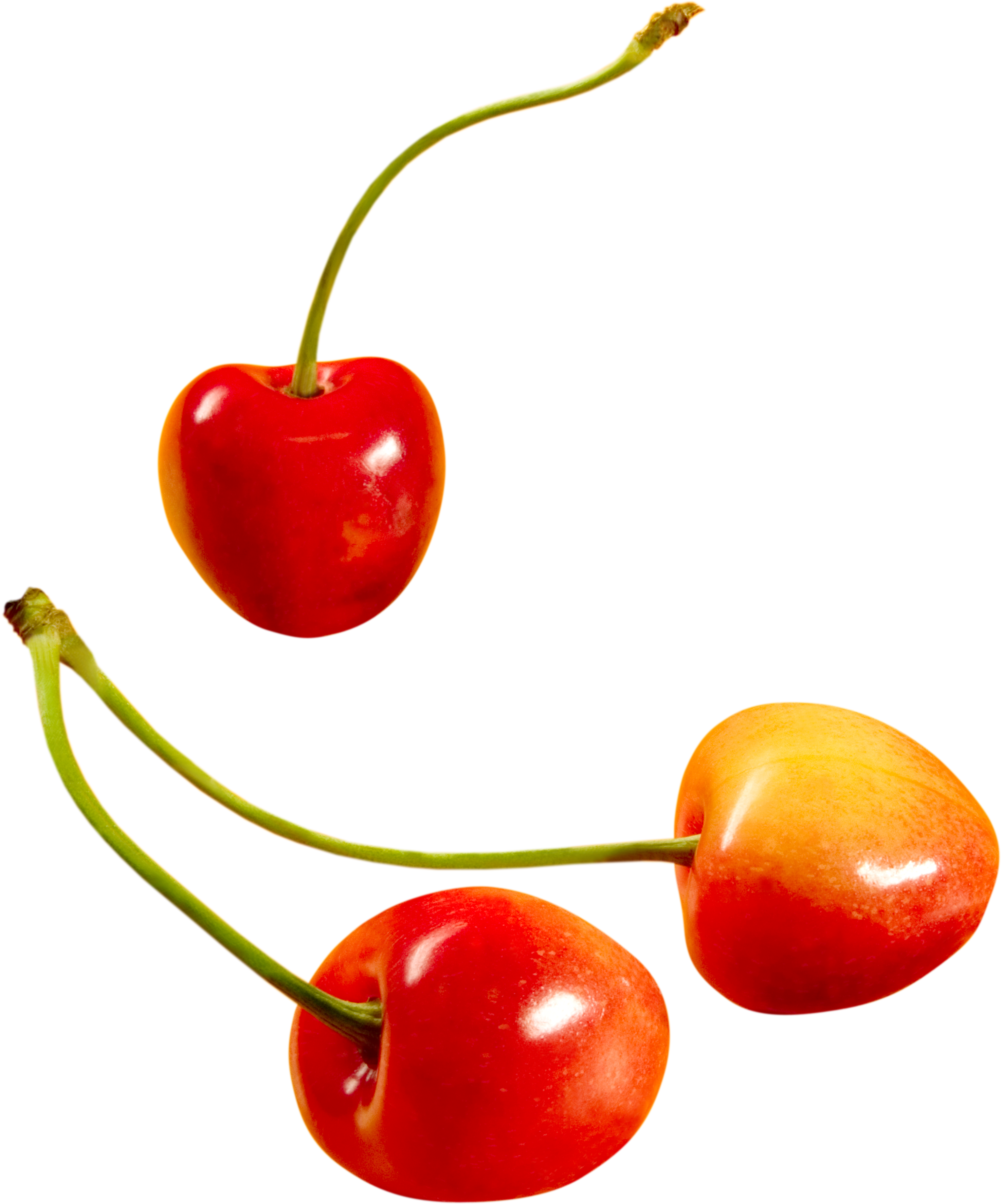 cherry PNG image