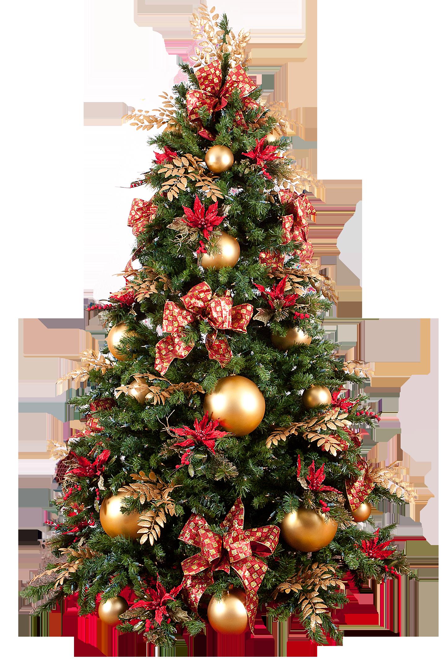 Colored Lights On Christmas Tree