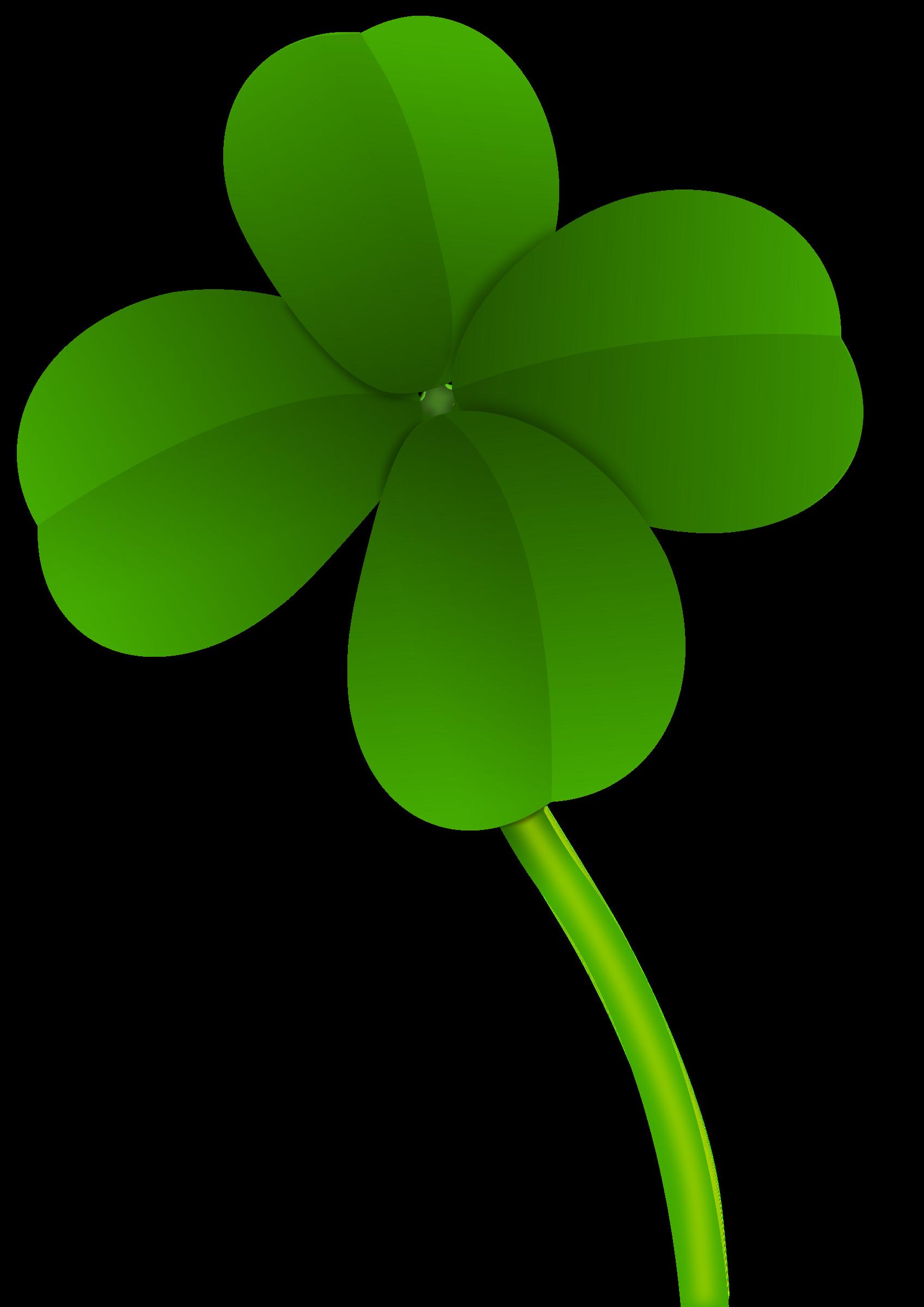Clover pictures leaf 4
