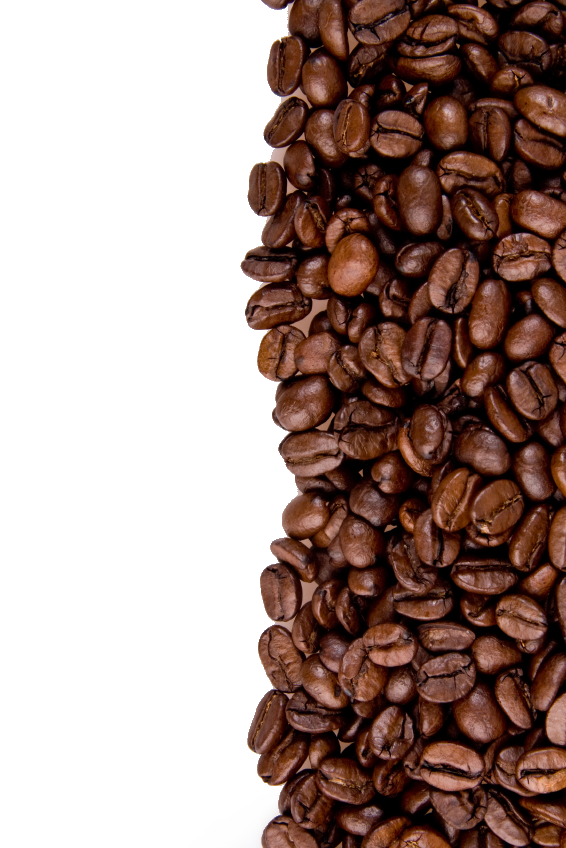 Coffee beans PNG images free download