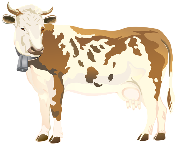 cow PNG
