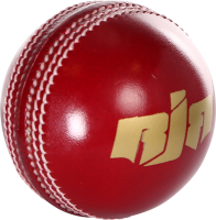 Cricket PNG