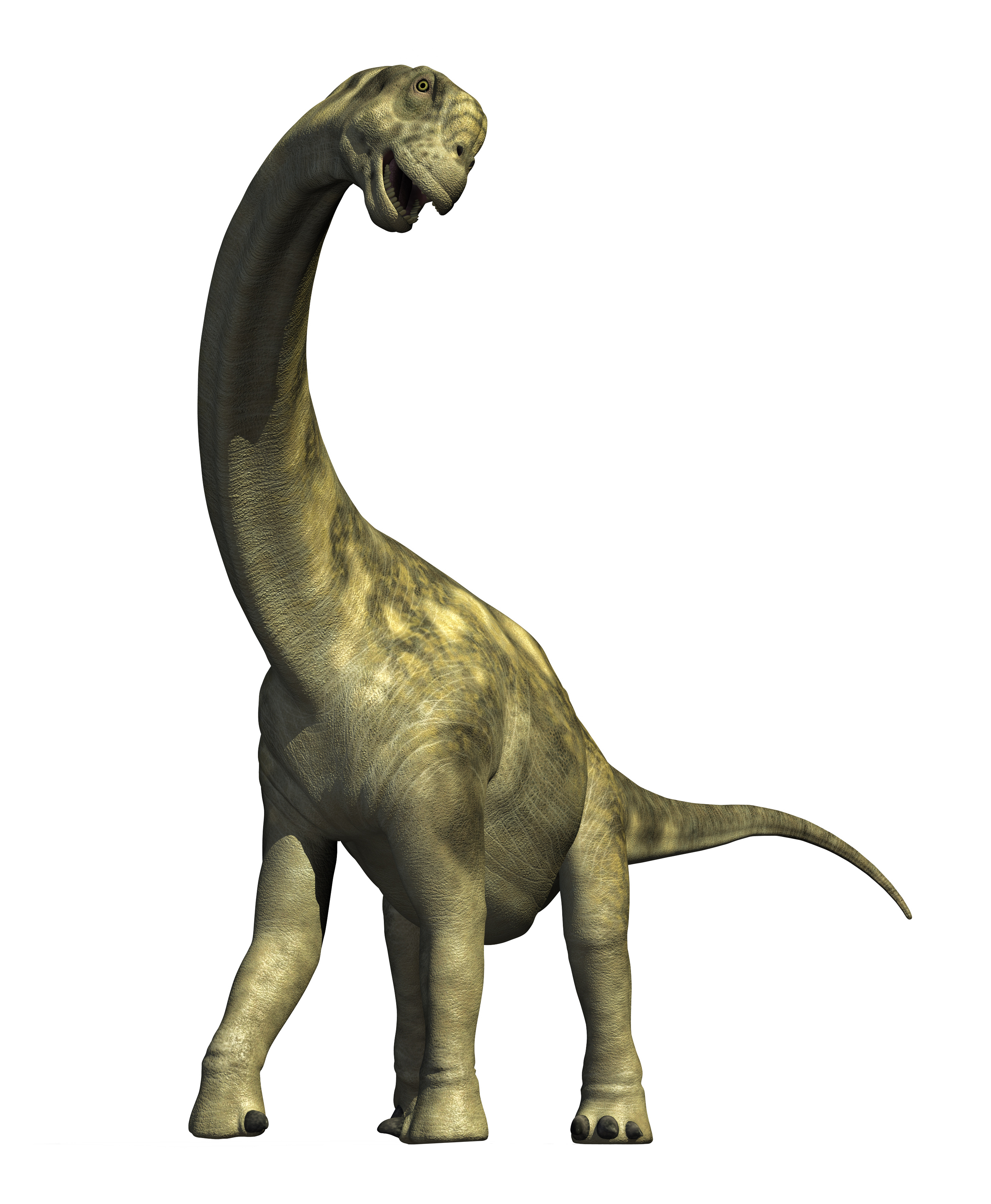 ... download png image dinosaur png in this page you can download png