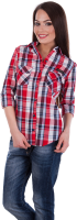 Women dress shirt PNG image