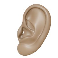 Ear PNG images