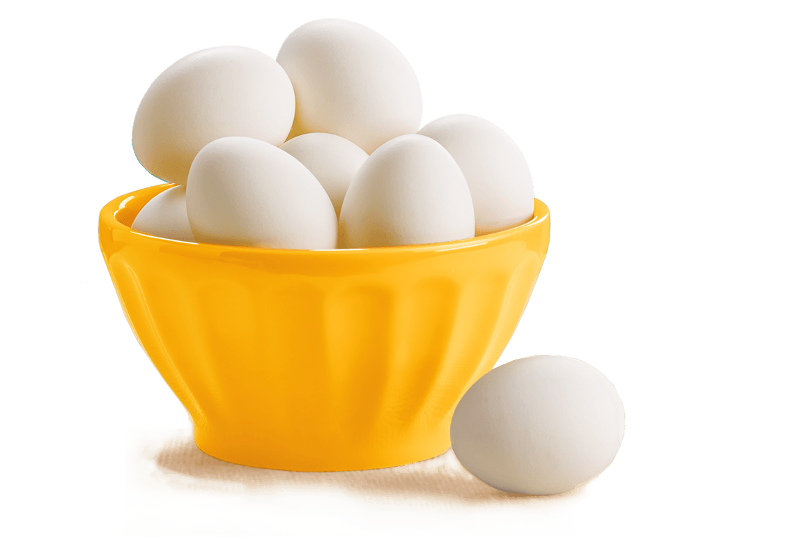 eggs png image  free download png pictures of eggs egg clipart free egg clipart preschool