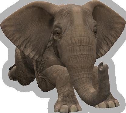 Is The Elephant Shavington Dog Friendly