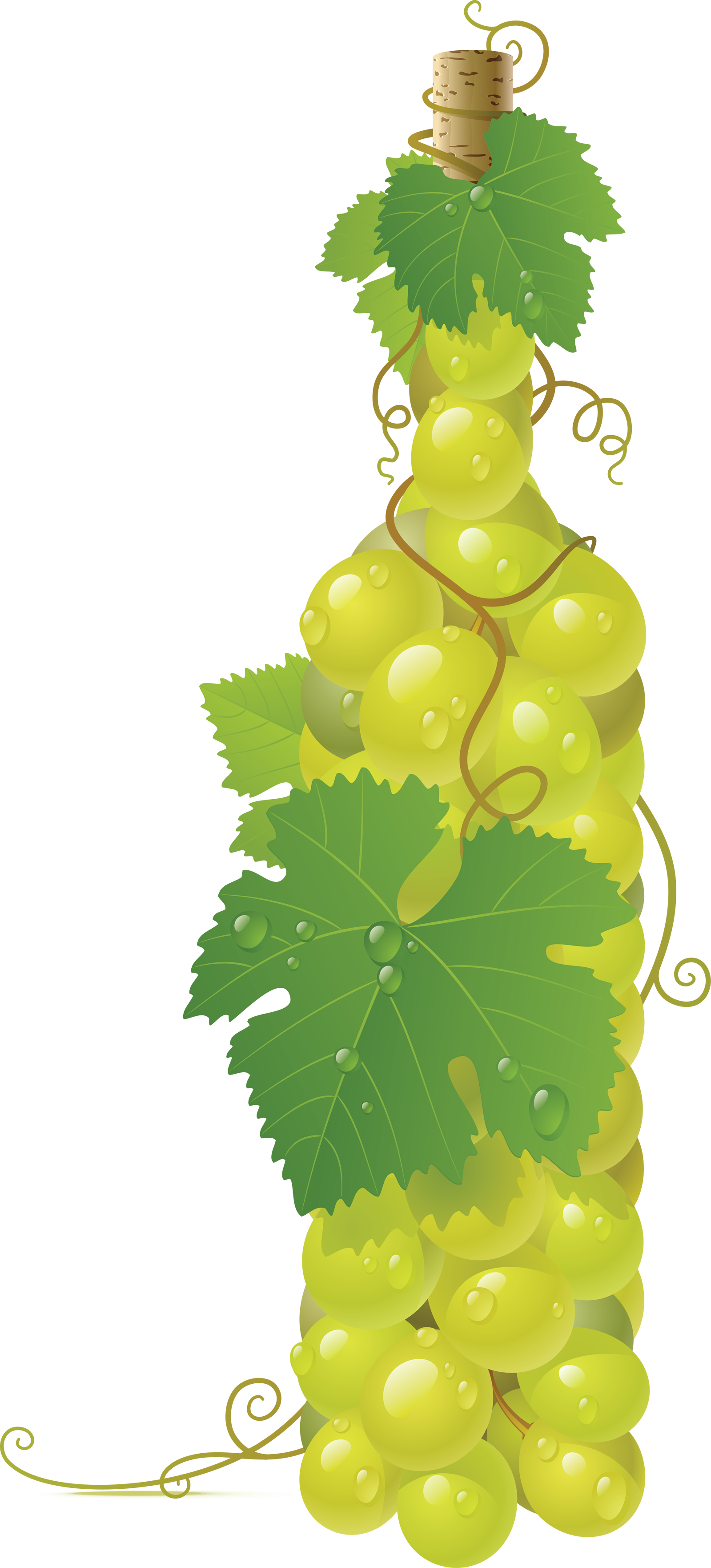 Green grape PNG image
