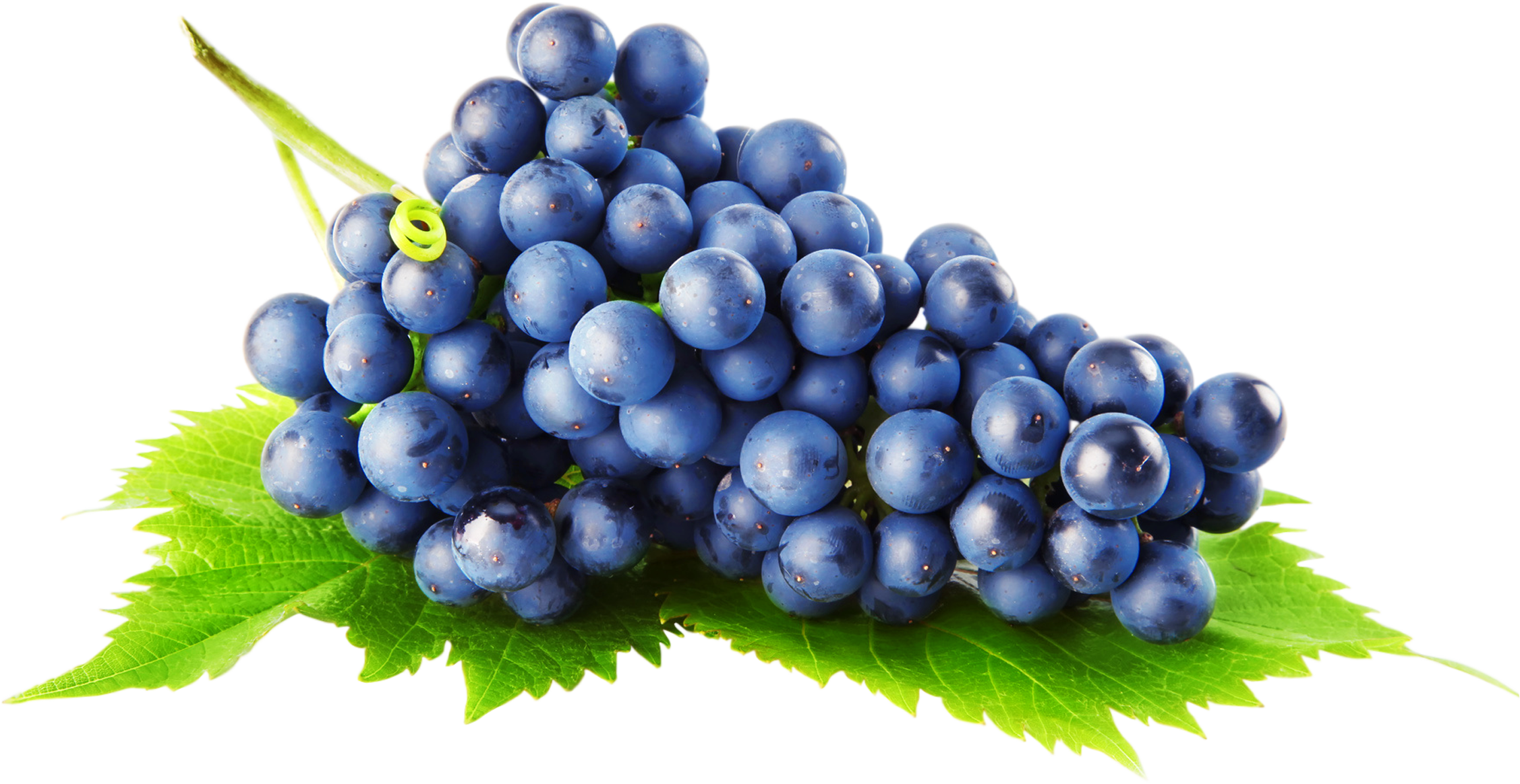 Grape PNG image