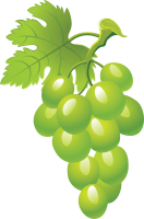 Green grape picture PNG image