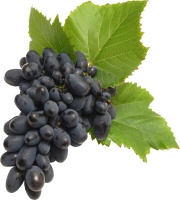 Grape PNG image download, free picture