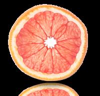 葡萄柚19