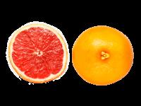 葡萄柚18