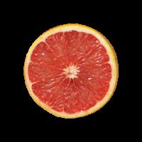 葡萄柚14