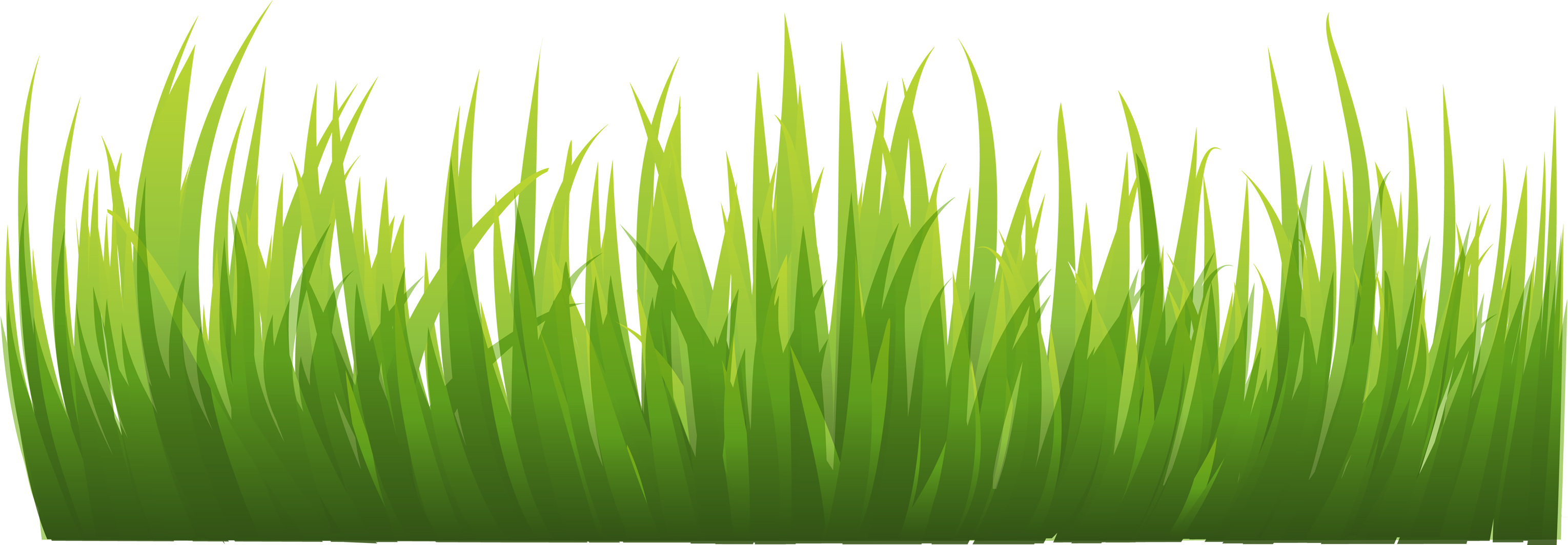 Grass Clip Art : Grass png images pictures