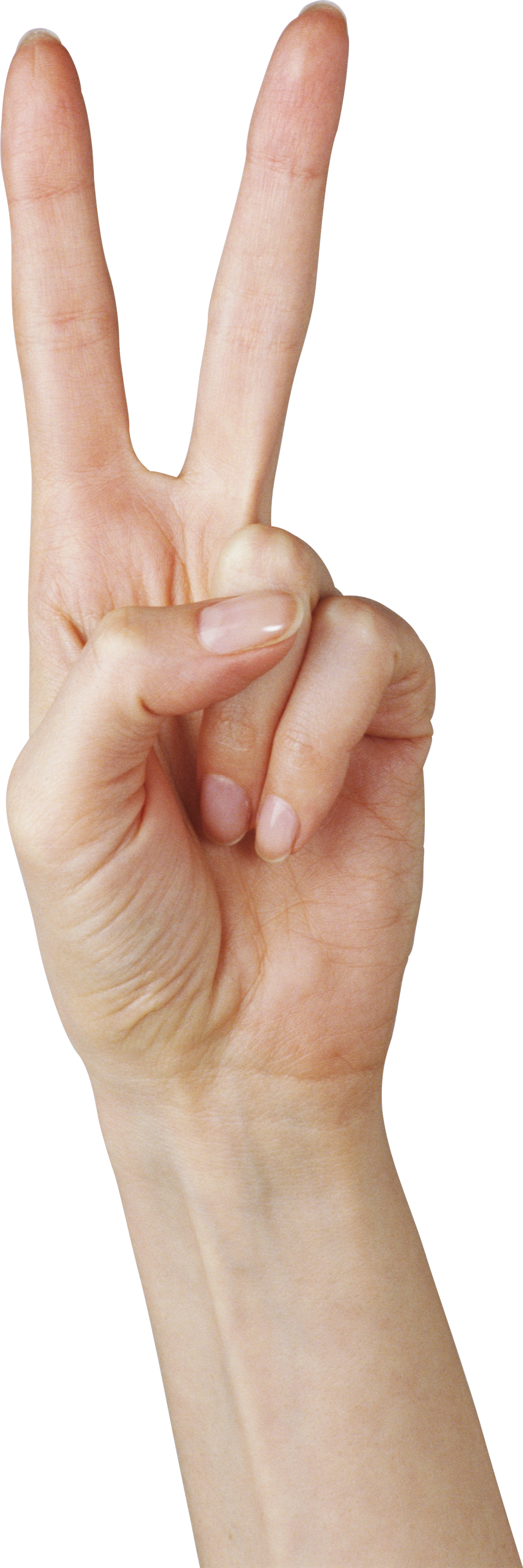 Hands Png Free Images Pictures Download Hand Hand png & psd images with full transparency. hands png free images pictures