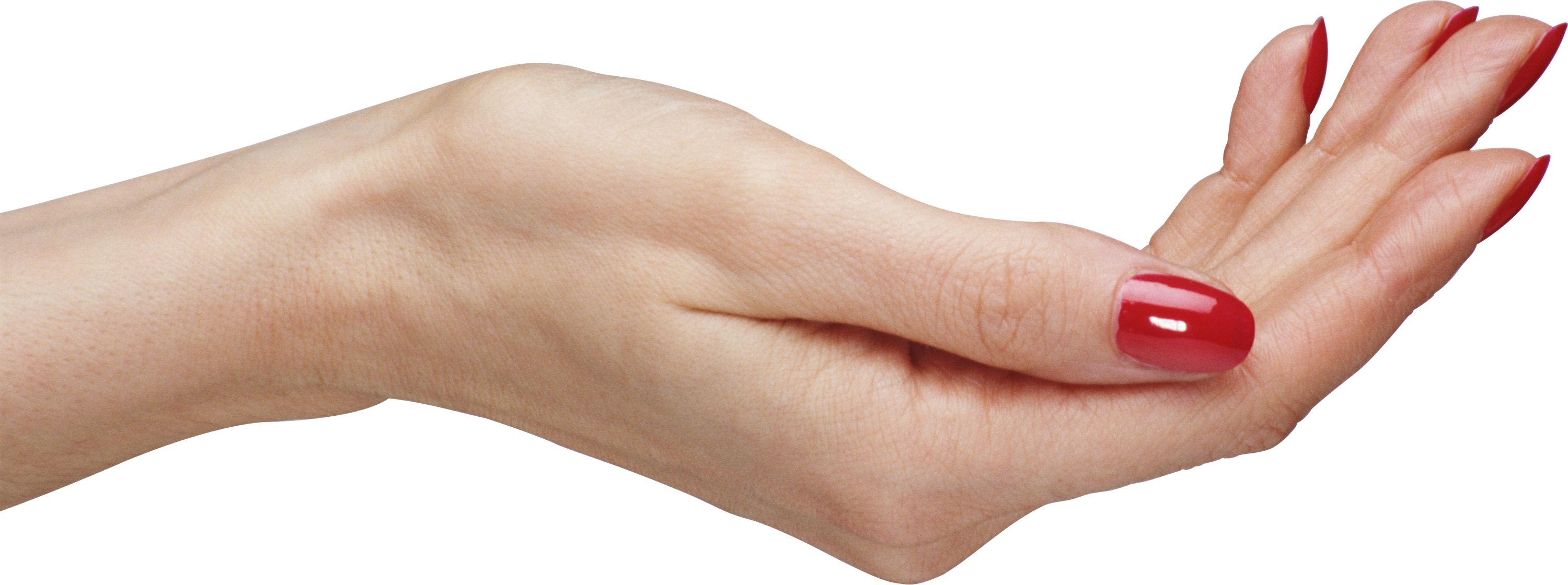 Palm hands PNG, hand image free