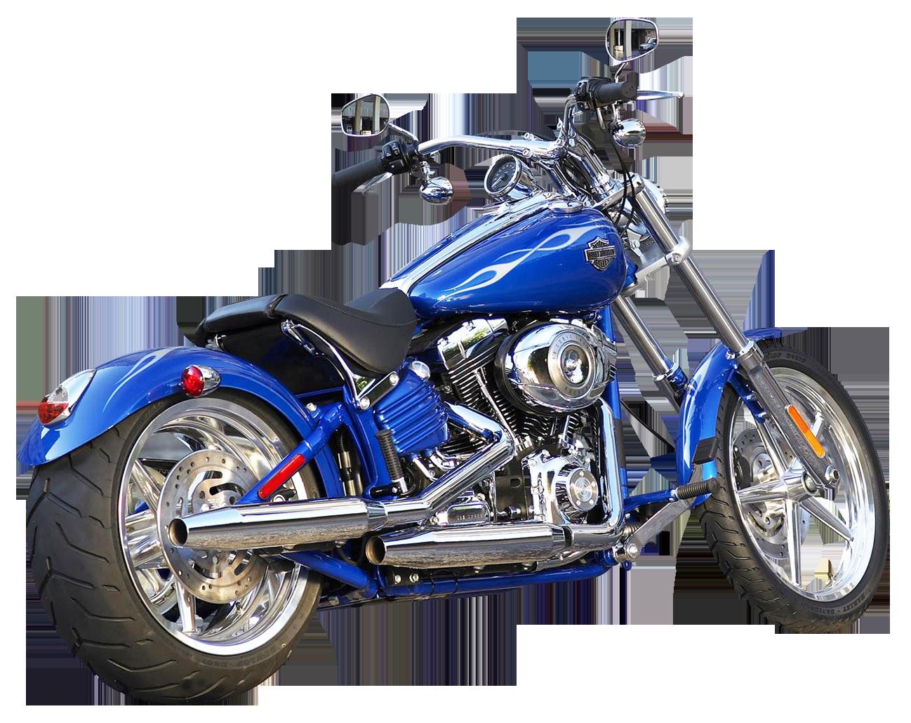Harley Davidson  Iron Custom Exhaust