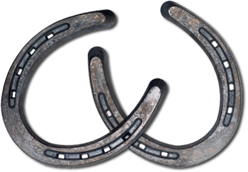 Horseshoe PNG