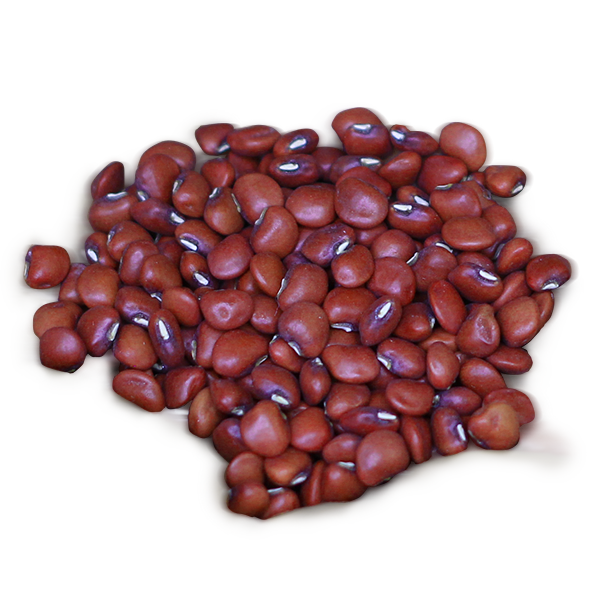 Kidney beans PNG