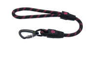Leash PNG