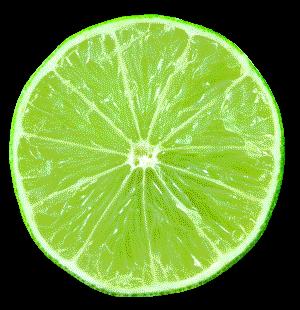 Best Key Lime Pie In Indian Rocks Beach