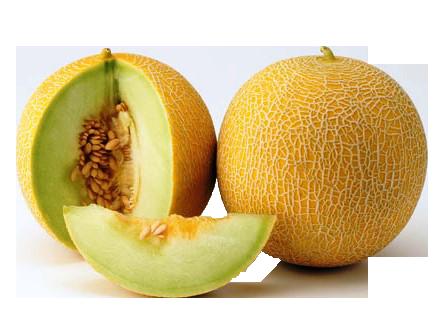 Melon Png Images Free Download Please, wait while your link is generating. melon png images free download