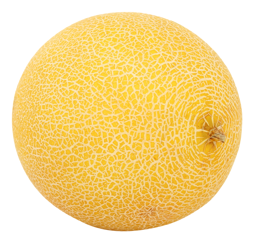 Ͽ� Ͽ� Ͽ� Ͽ� Ͽ� Ͽ� Ͽ� Ͽ� Ͽ� Ͽ� Ͽ� Ͽ� Ͽ� Ͽ� Ͽ� Ͽ� Ͽ� Ͽ� Ͽ� Ͽ� Ͽ� Ͽ� Ͽ� Ͽ� Ͽ� Ͽ� Ͽ� Ͽ� Ͽ� Ͽ� Ͽ� Ͽ� Ͽ� Ͽ� Ͽ� Ͽ� Ͽ� Ͽ� Ͽ� Ͽ� Ͽ� Ͽ� Ͽ� Ͽ� Ͽ� Ͽ� Ͽ� Ͽ� Ͽ� Png: Melon PNG Images Free Download