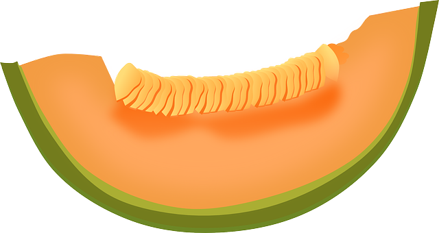 Slice melon PNG