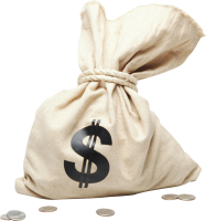Money bag PNG image