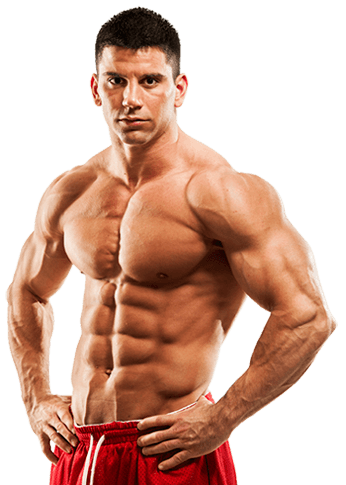 Muscle body PNG