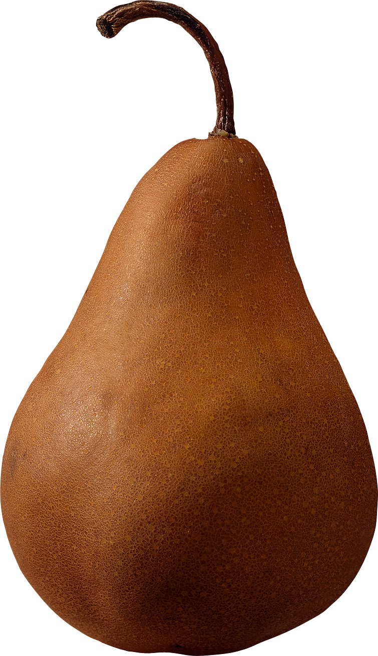 Brown pear PNG image