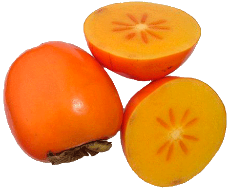 Persimmon PNG image