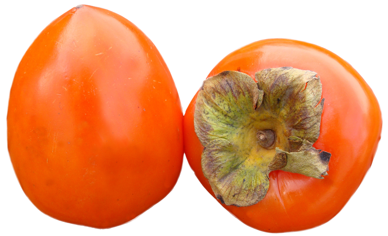 Persimmons PNG image