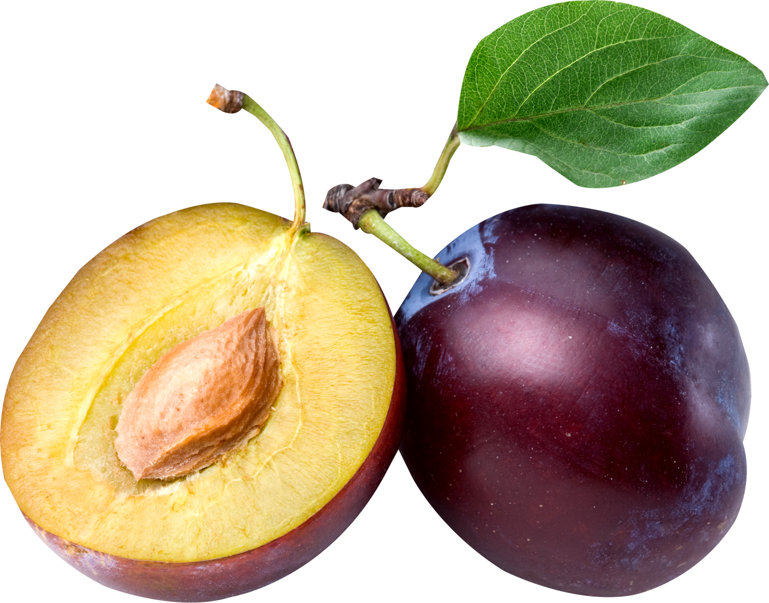 Plum PNG image