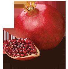 Pomegranate PNG images Download