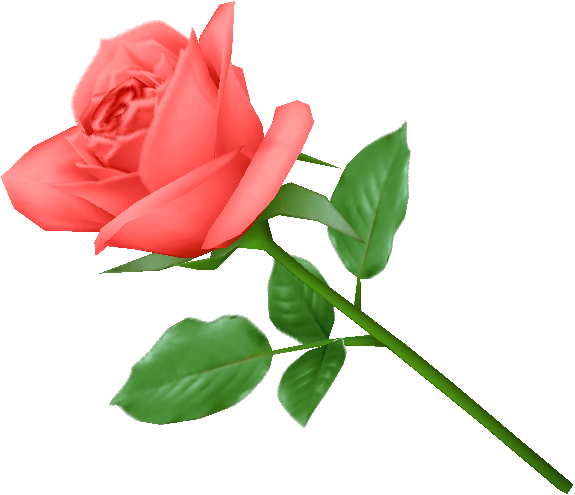 Pink rose png image, free picture download