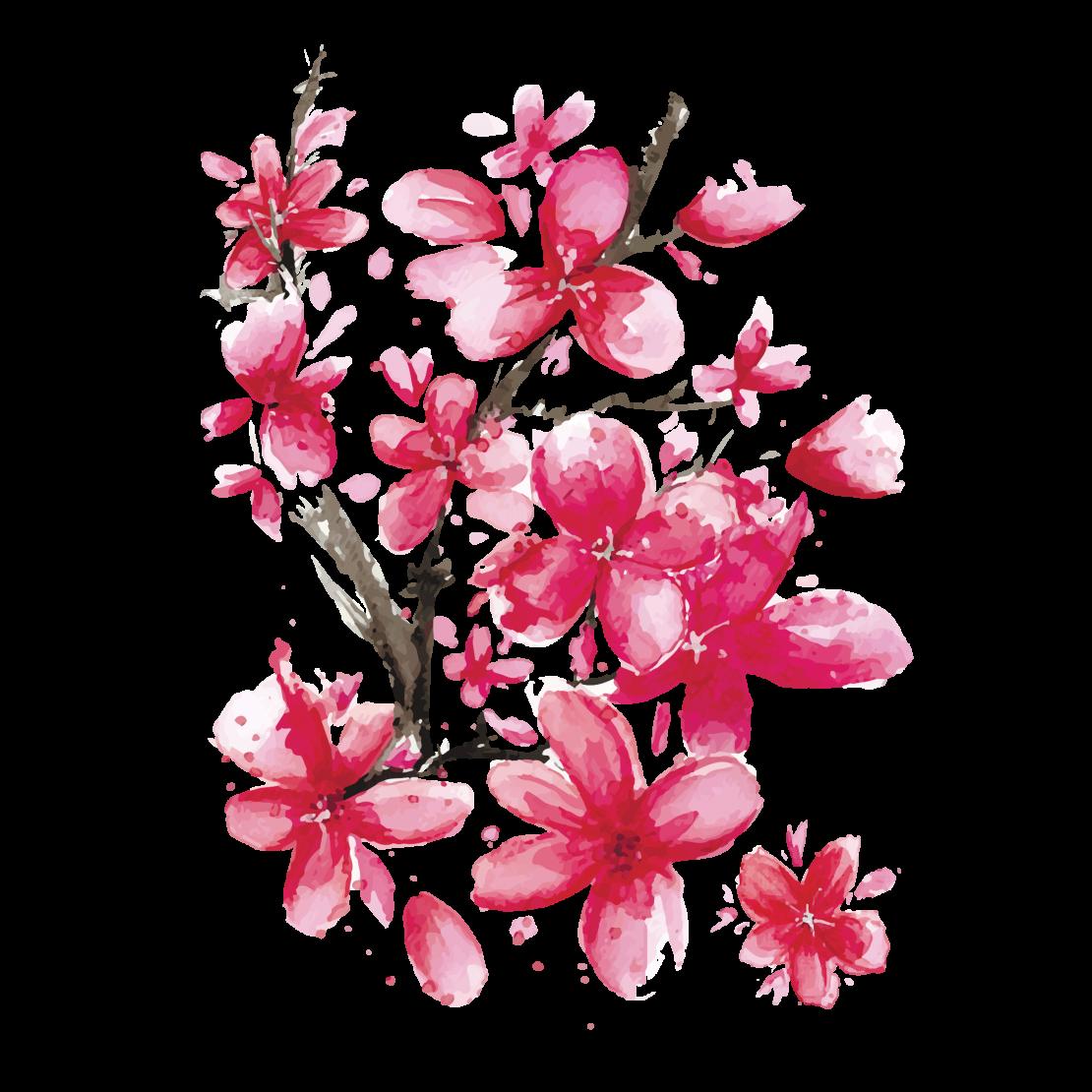 Sakura Png