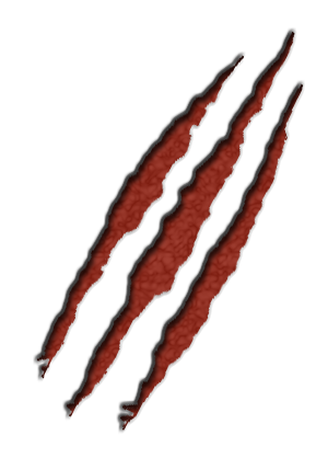 Scratches claw PNG image