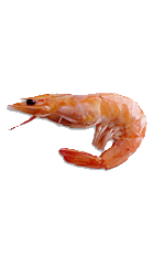 Shrimps PNG