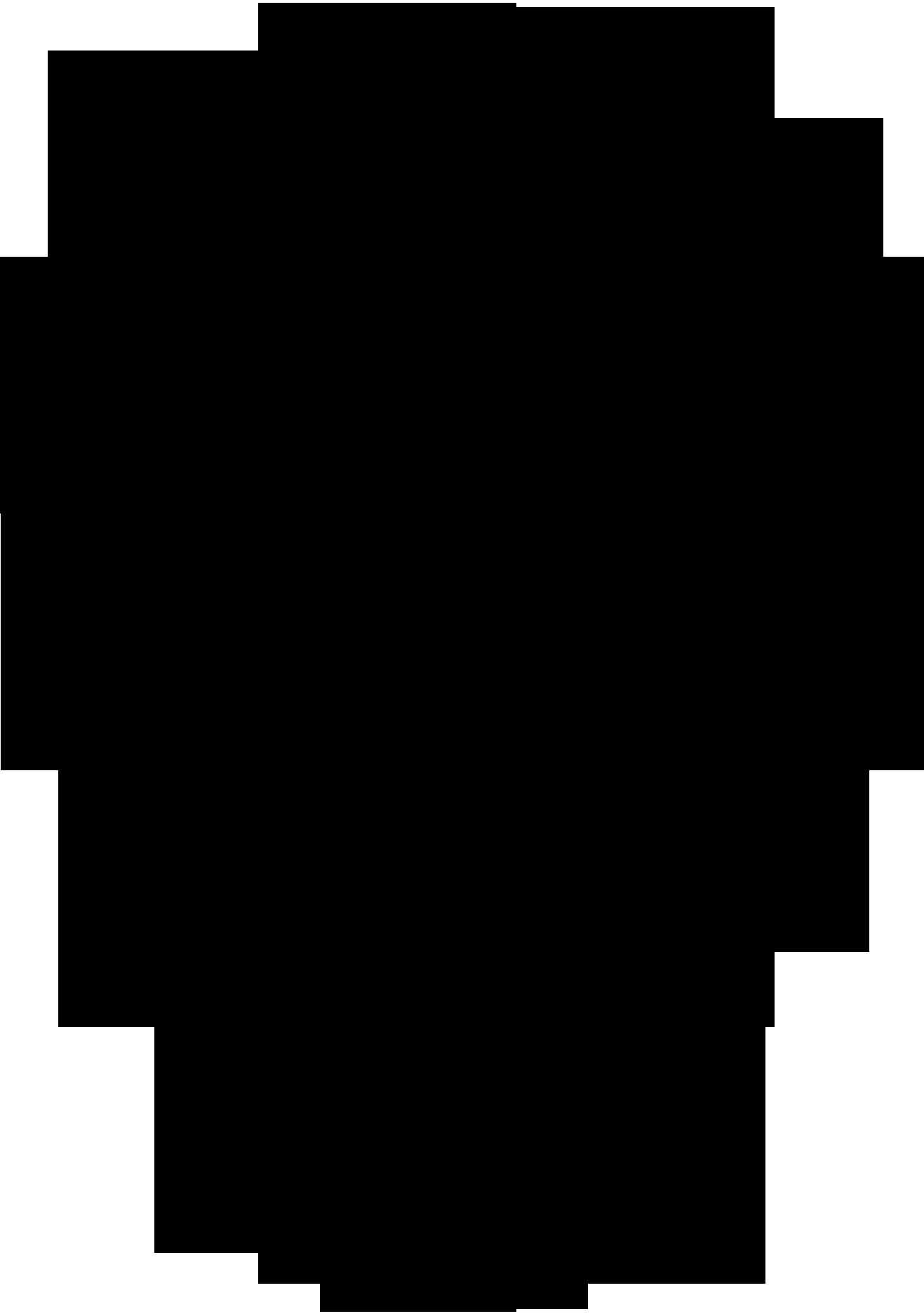 1317 x 1876 png 549kBSkull