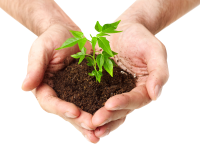 Soil in hands PNG