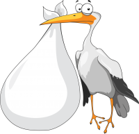 stork baby PNG