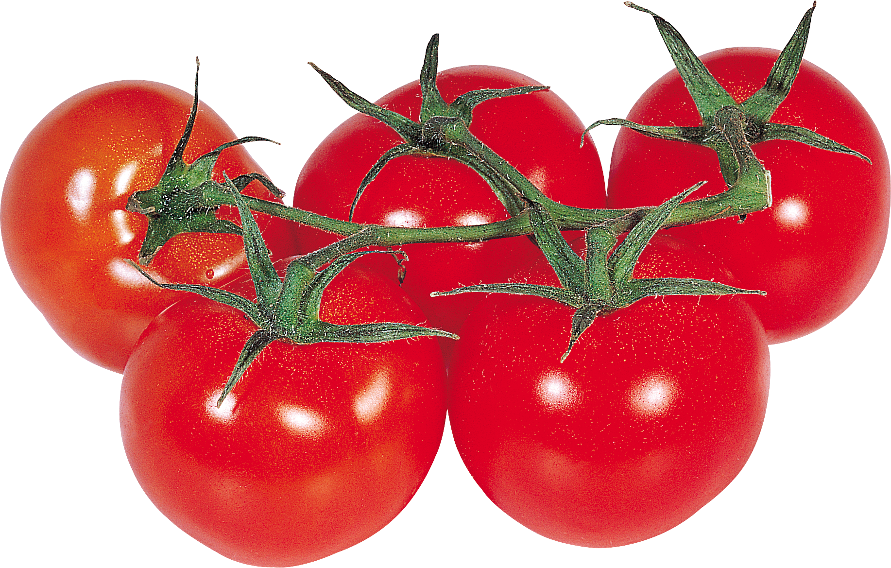 Tomato PNG